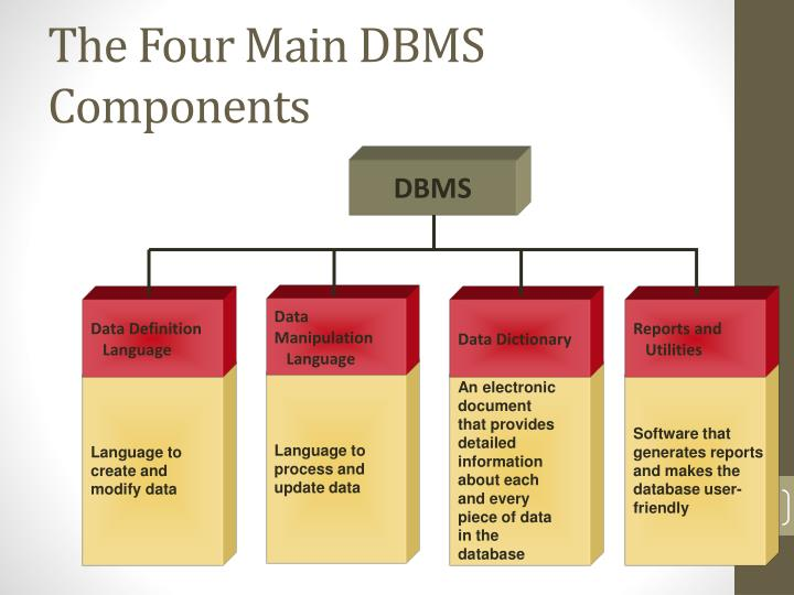 The Four Main DBMS Components