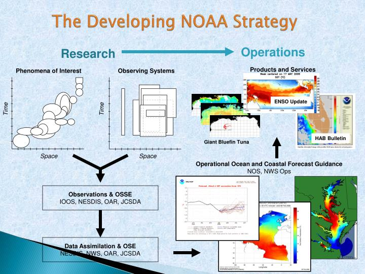 The developing noaa strategy