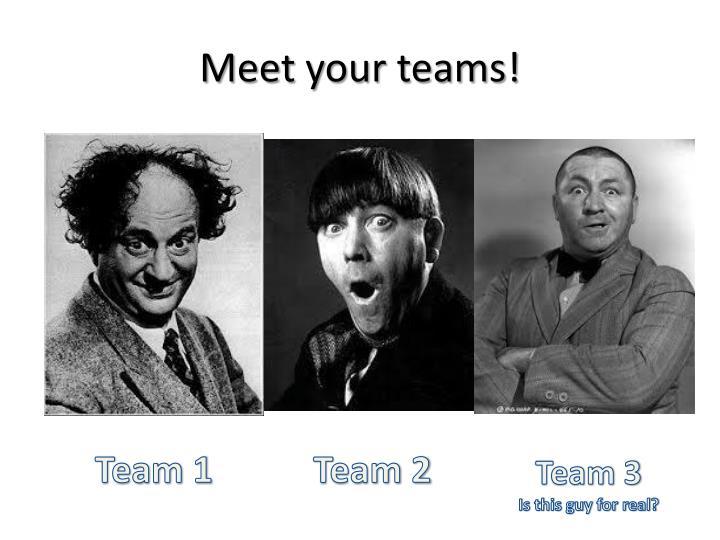 Meet your teams!