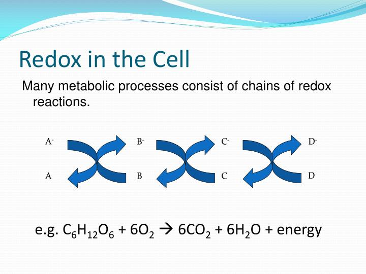 Redox in the Cell
