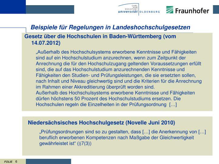 Niedersächsisches Hochschulgesetz (Novelle Juni 2010)