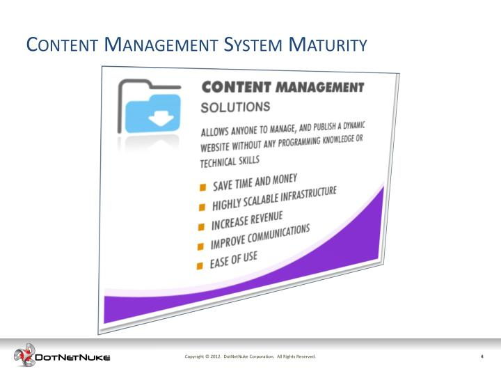 Content Management System Maturity