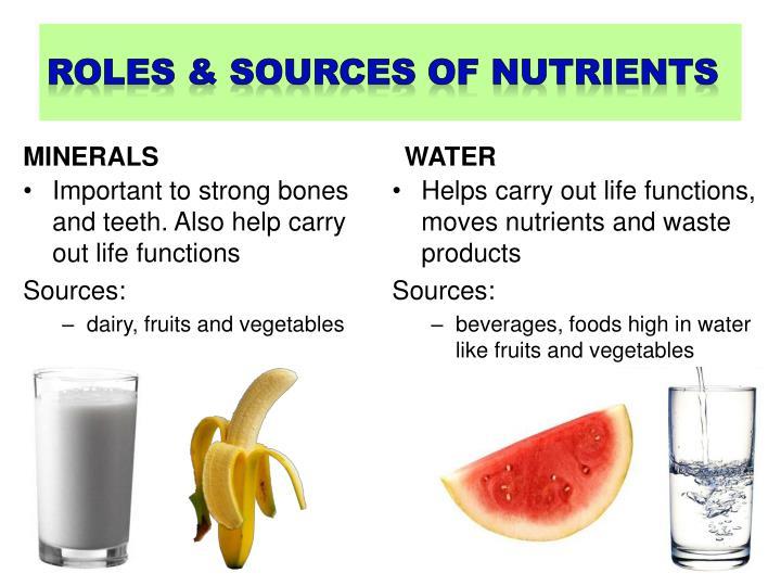 roles & sources of nutrients