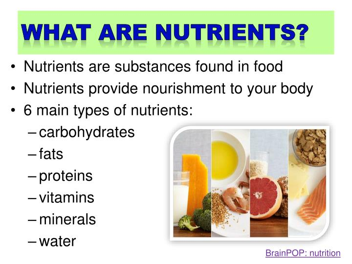 what are nutrients?