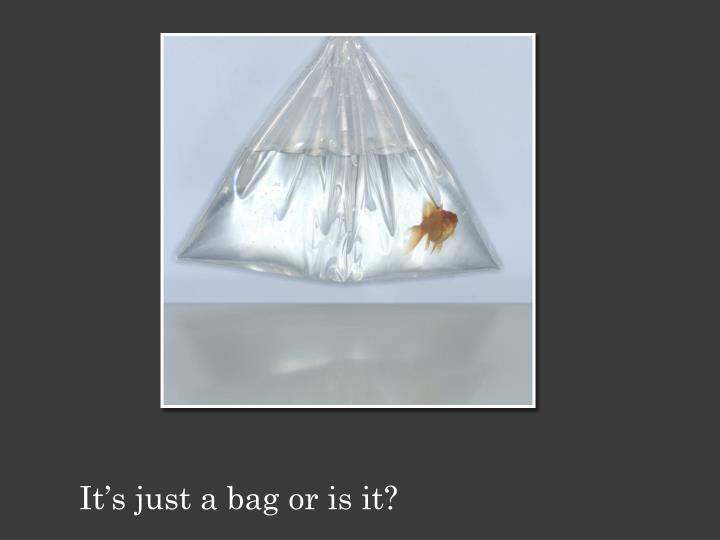 It's just a bag or is it?