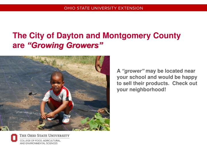 The City of Dayton and Montgomery County are