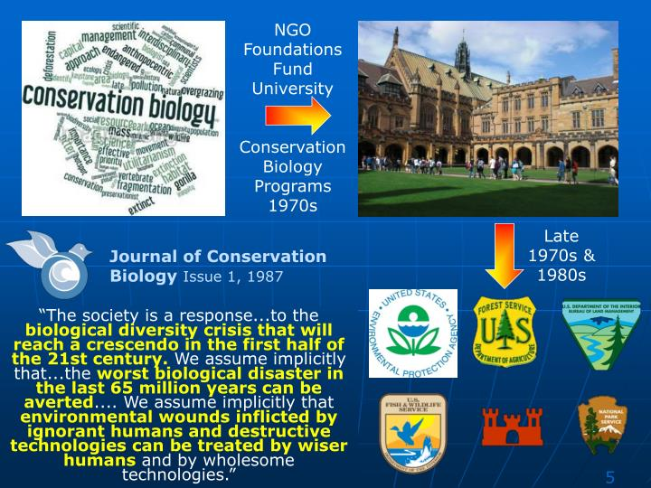 NGO Foundations Fund University