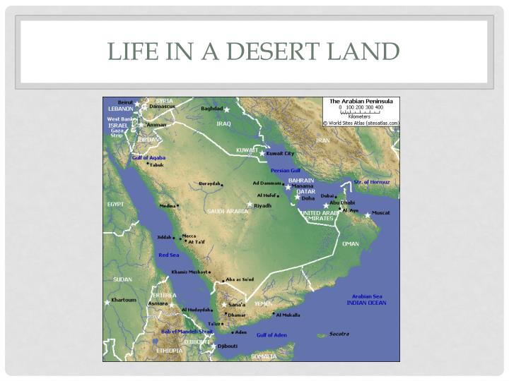 Life in a Desert Land