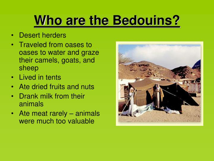Who are the Bedouins?