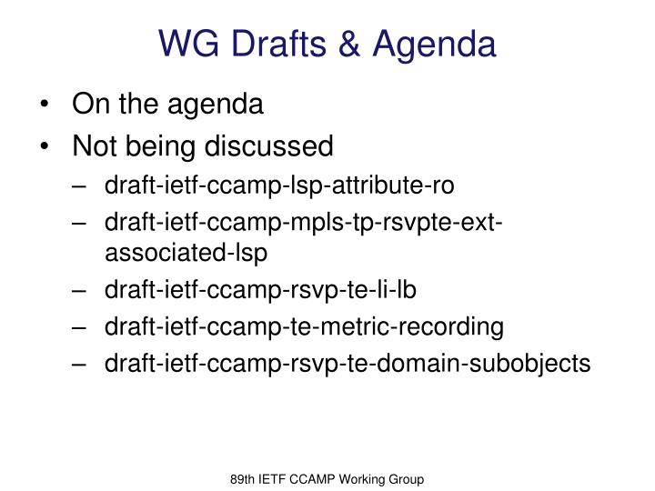 88th IETF CCAMP Working Group