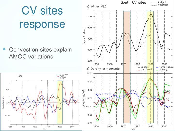 CV sites