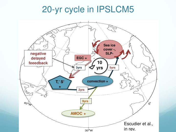 20-yr cycle in IPSLCM5