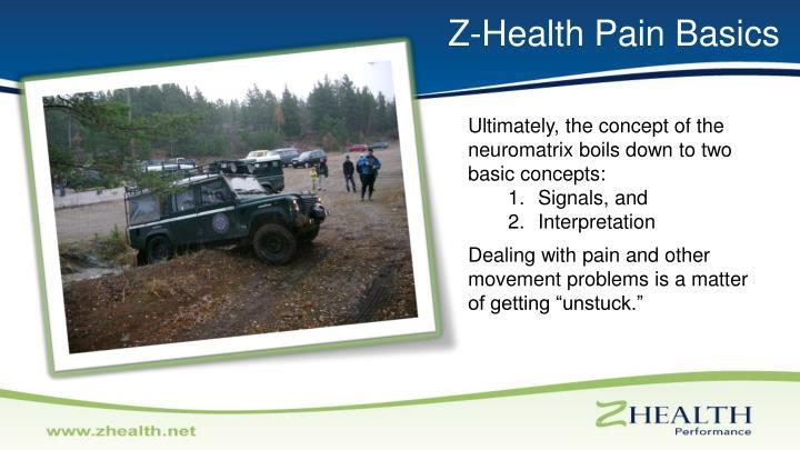 Z-Health Pain Basics