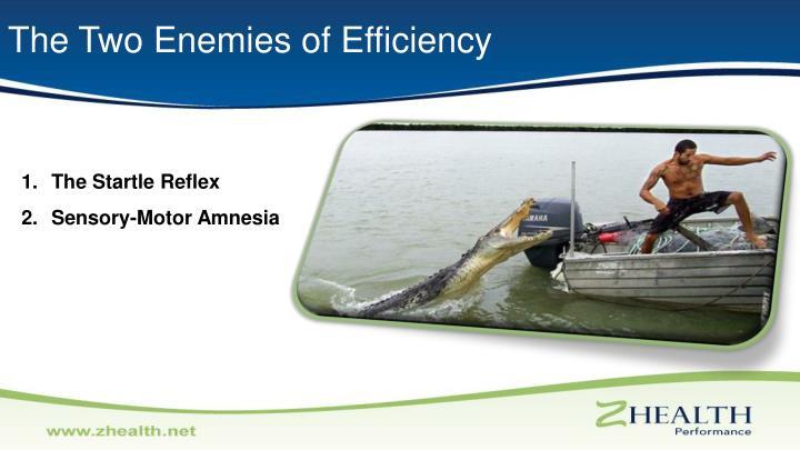 The Two Enemies of Efficiency
