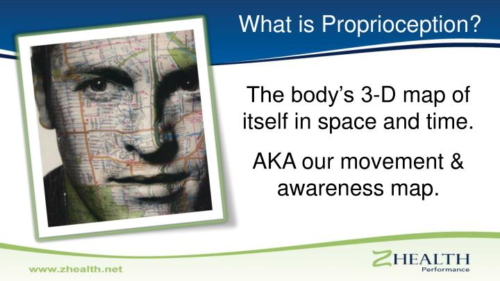 What is Proprioception?