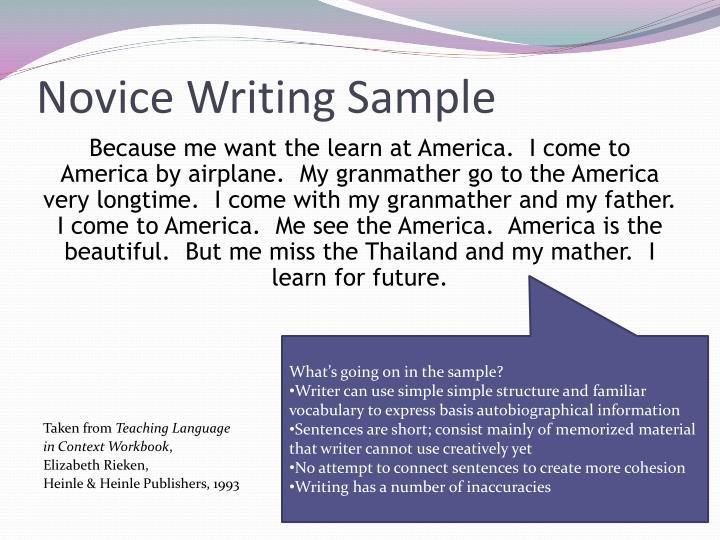Novice Writing Sample