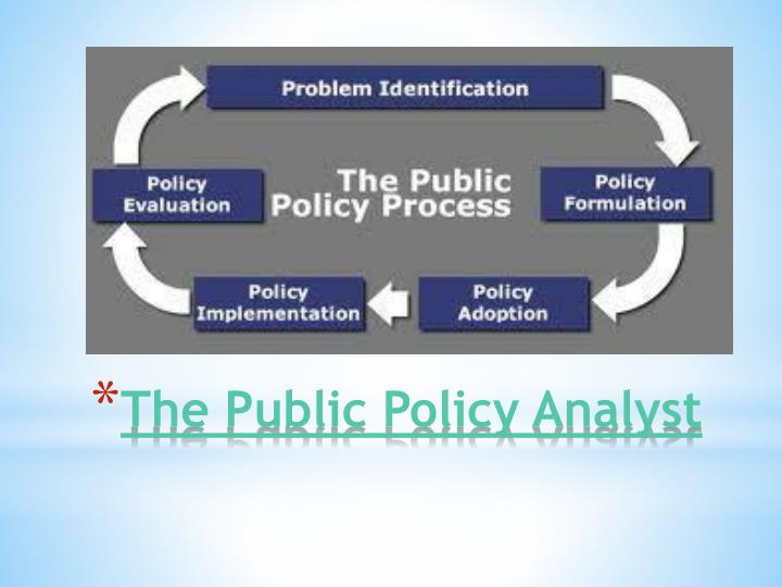 The Public Policy Analyst