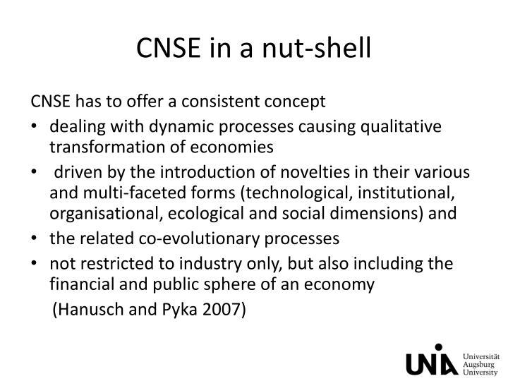 CNSE in a