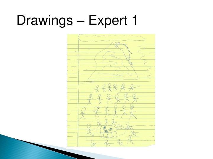 Drawings – Expert 1