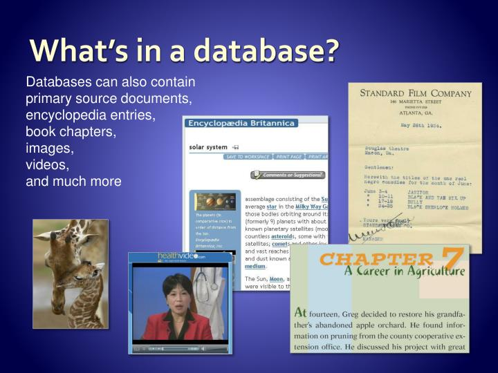 What's in a database?