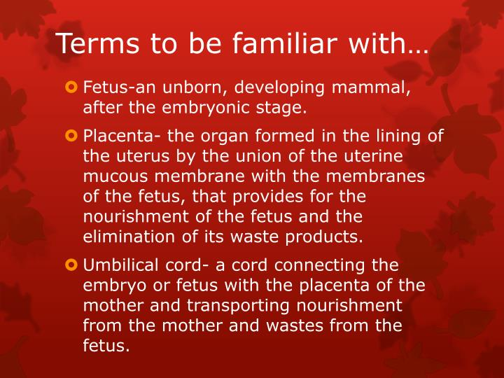 Terms to be familiar with…