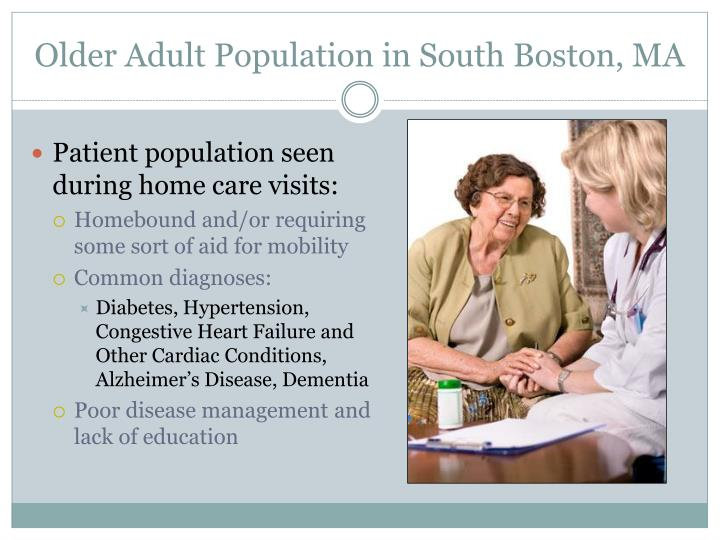 Older Adult Population in South Boston, MA