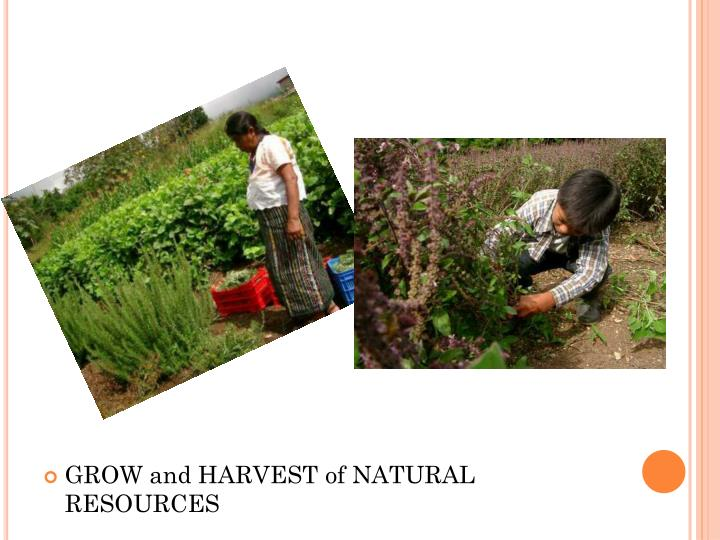 GROW and HARVEST of NATURAL RESOURCES