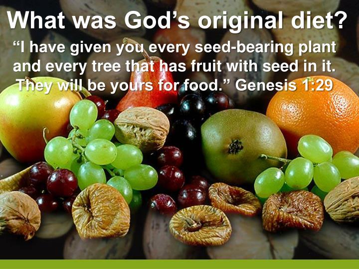 What was God's original diet?