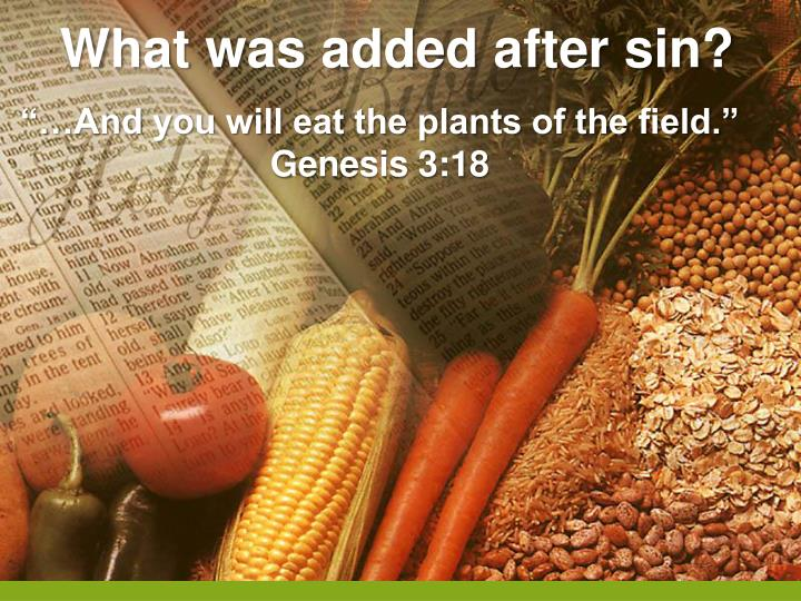 What was added after sin?