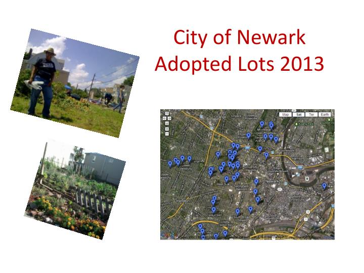City of newark adopted lots 2013