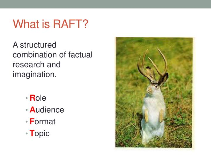 What is RAFT?