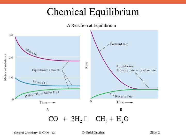 A Reaction at Equilibrium
