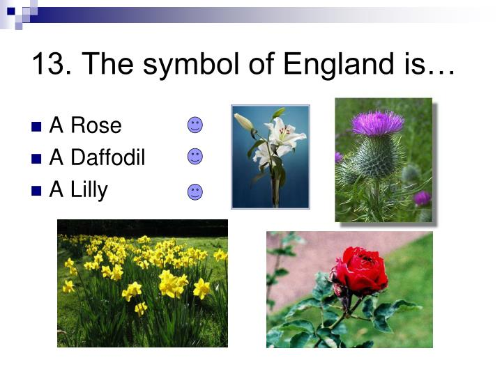 13. The symbol of England is…