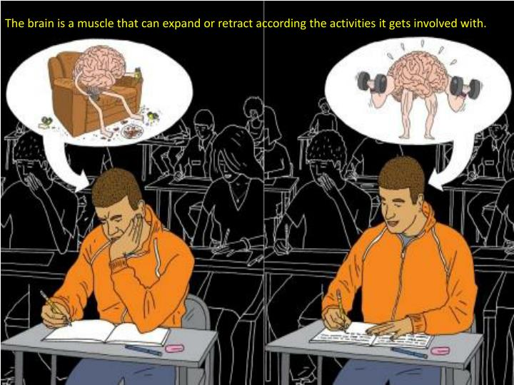 The brain is a muscle that can expand or retract according the activities it gets involved with.