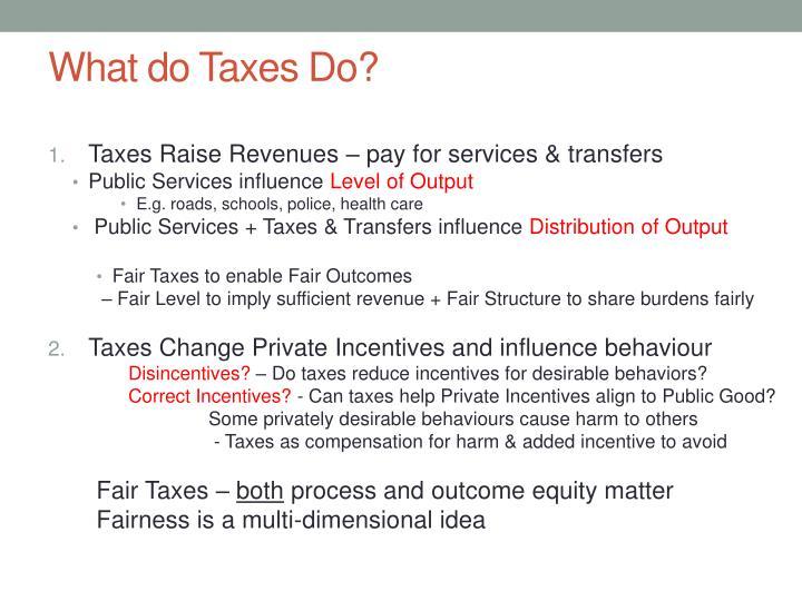 What do Taxes Do?