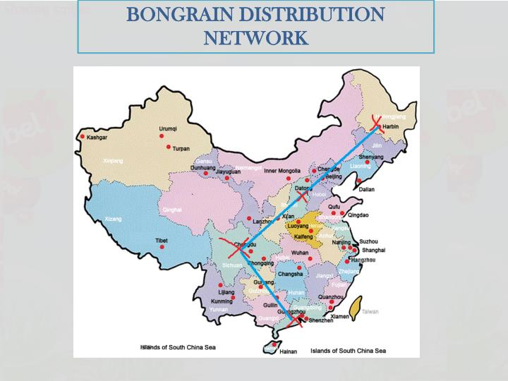 BONGRAIN DISTRIBUTION NETWORK