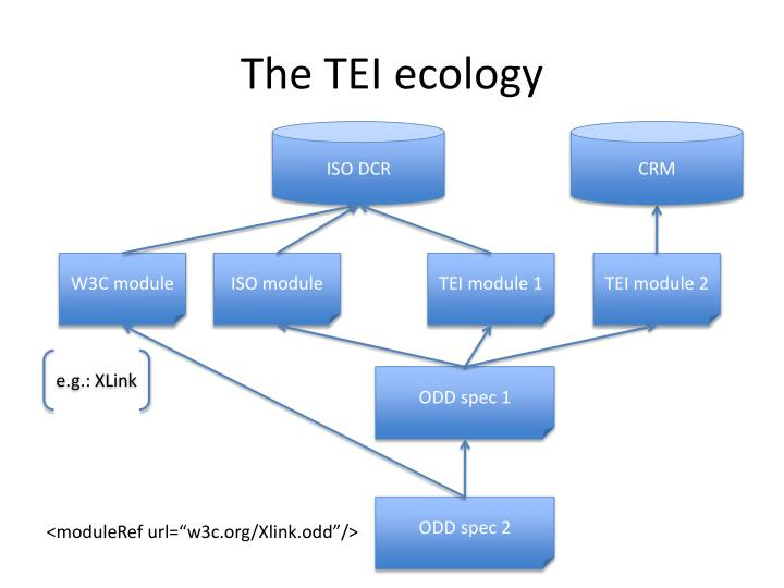 The TEI ecology