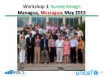 workshop 1 survey design managua nicaragua may 2013