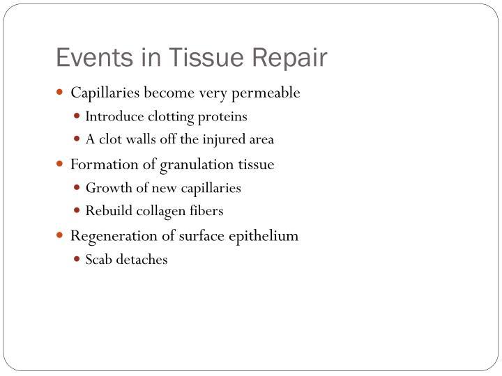 Events in Tissue Repair