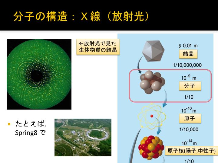 分子の構造:X線(放射光)