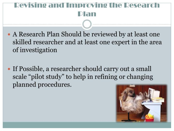 Revising and Improving the Research Plan
