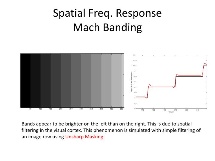 Spatial Freq. Response