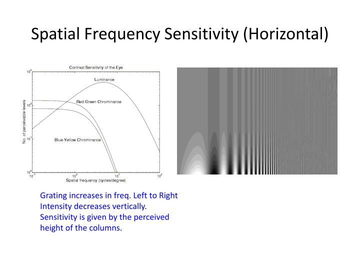 Spatial Frequency Sensitivity (Horizontal)