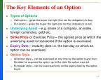 the key elements of an option