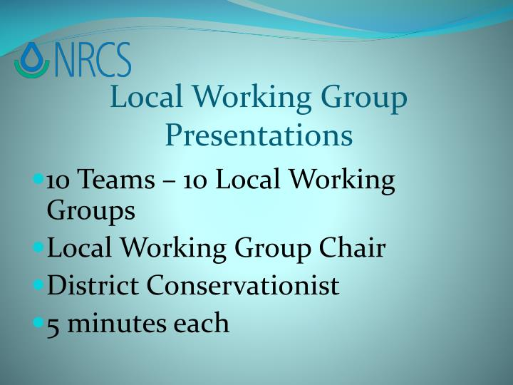 Local Working Group