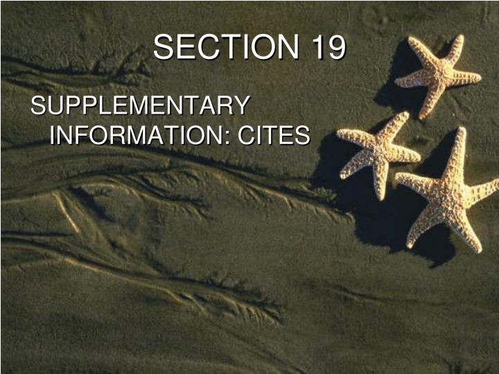 SECTION 19