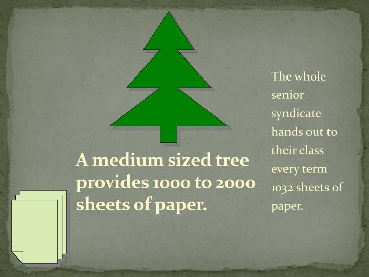 A medium sized tree provides 1000 to 2000 sheets of paper.