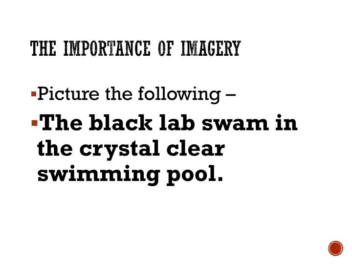 The Importance of Imagery