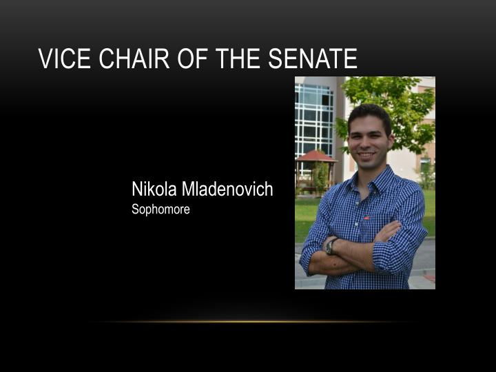 Vice chair of the senate