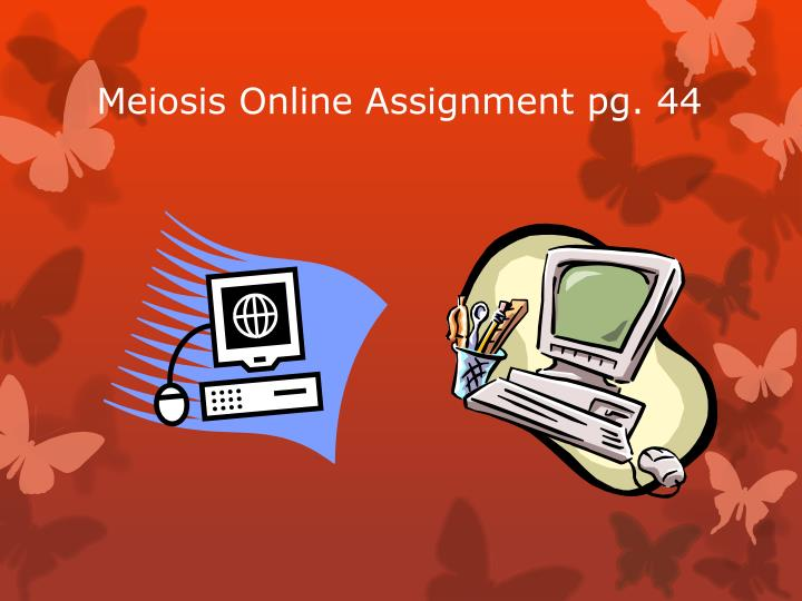 Meiosis Online Assignment pg. 44